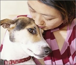 Woman holding a dog in a red collar.